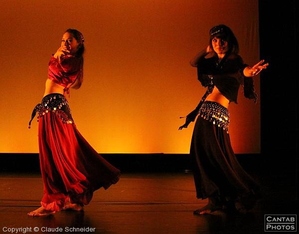 Beauty - Contemporary Belly Dance - Photo 13